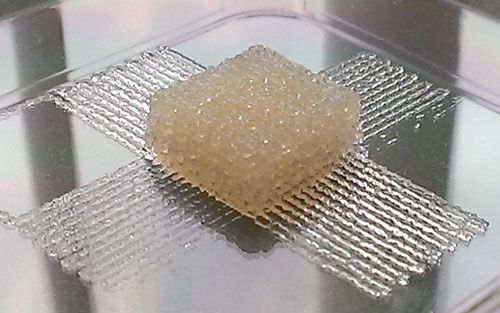 Silk-based, 3-D printer ink for use in biomedical implants or tissue engineering.