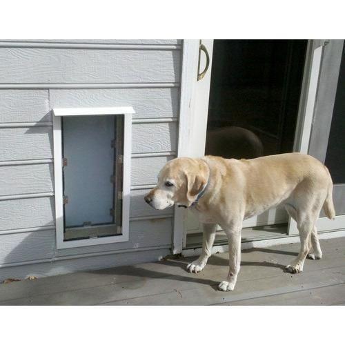 Hale Pet Door For Walls Dog Door Cat Door Pet Door