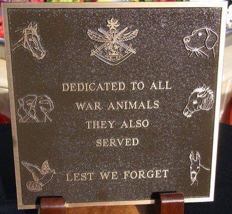 LEST = de peur  ---   Dédié à tous les animaux de guerre, eux aussi ont servi. De peur d'oublier.