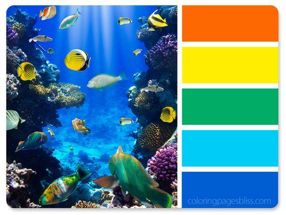 Underwater Ocean Life Color Palette
