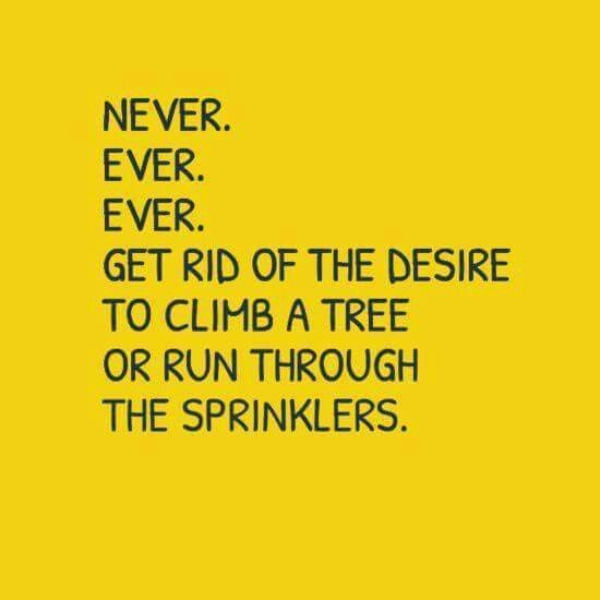 climb trees and run through sprinklers