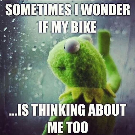 sometimes I wonder if my bike, is thinking about me too