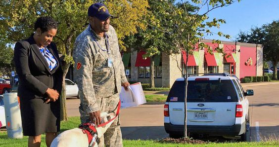 For his free meal on Veteran's Day, Ernest Walker picked the Chili's in Cedar Hill. His service dog Barack tagged along.Walker was finishing his...