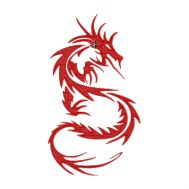 Dragon (tatoo), motif broderie machine