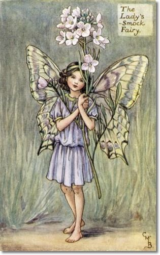Cicely Mary Barker - Flower Fairies of the Spring - The Ladys Smock Fairy Painting: