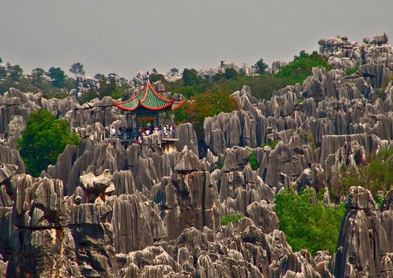 bosque de piedra en shilin china - Buscar con Google