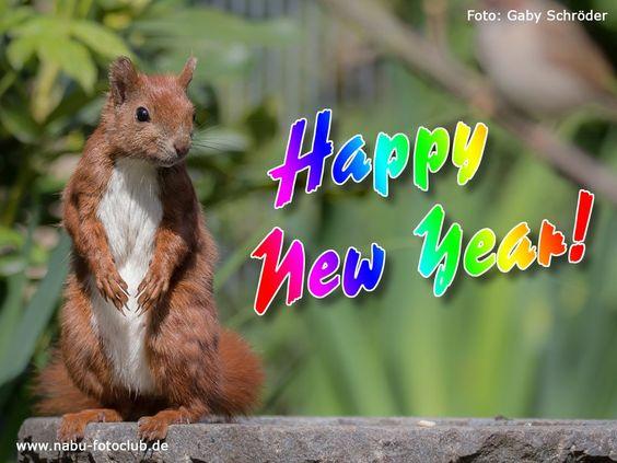Wir wünschen Ihnen einen guten Rutsch ins neue Jahr und freuen uns schon sehr auf das neue Jahr mit Ihnen!!!