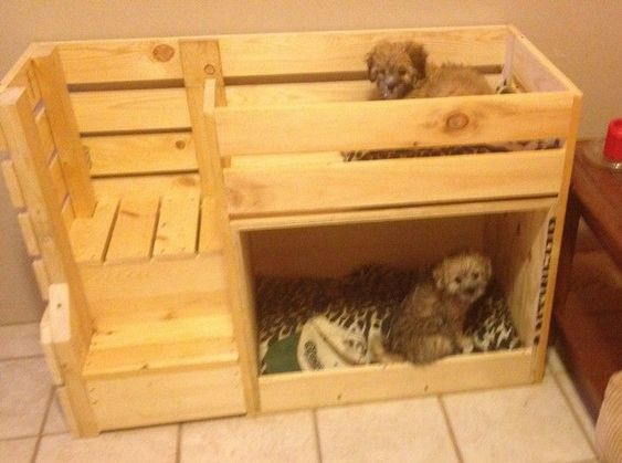 Bunk style dog house are great for small breeds