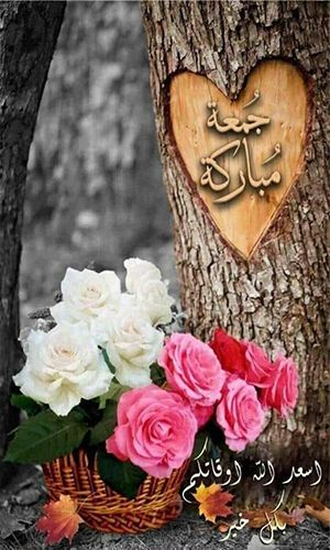 صور جمعه مباركه صور جمعة مباركة صور جمعه صور الجمعه Juma Mubarak Images Jummah Mubarak Messages Jumma Mubarik