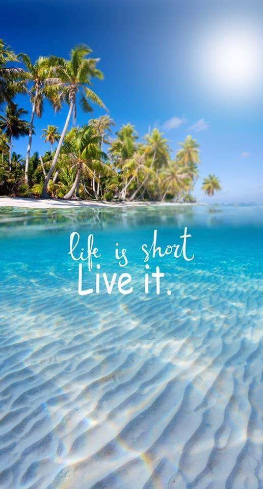 Life Live Quotes Short Instagram Short Summer Tropical Vacation In 2021 Life Is Short Live It Wallpaper Quotes Beach Quotes Best of summer cute wallpaper for