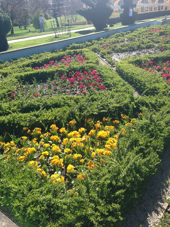 Battersea Park - flower bed