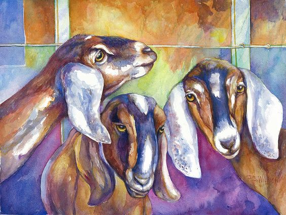 Three Goats Painting  - Three Goats Fine Art Print