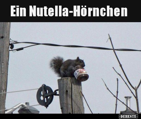 Ein Nutella Hornchen Lustige Bilder Humor Lustig Echt Witzig