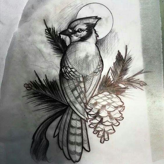 Blue Jay sketch by Matt Rictus