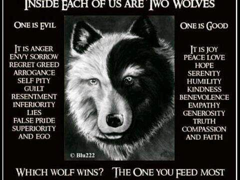 Which wolf wins? The one you feed the most.