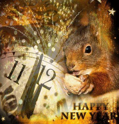 """Happy New Year to all """"Feelin' Squirrely"""" followers and may the coming year be filled with squirrely blessings!"""