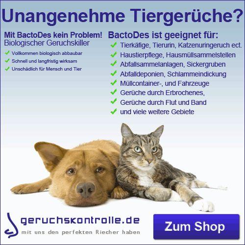 Mit #Geruchskiller nicht nur #Katzenurin entfernen