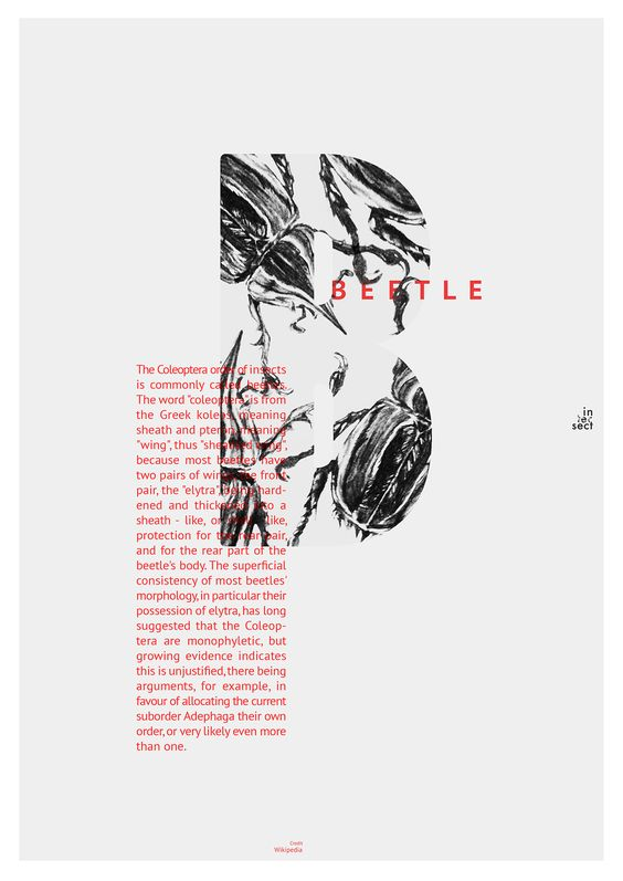 This is my class assignment to design by using typography.I very interested in what i did. I tried to match characteristic of type and insect by without losing any of their identity.
