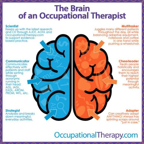 Occupational Therapy Assistant (OTA) me to we essay