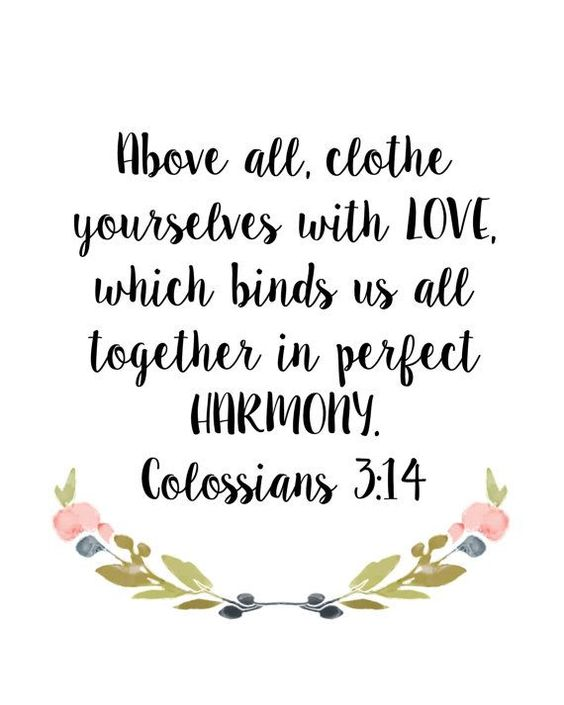 Image result for colossians 3:14