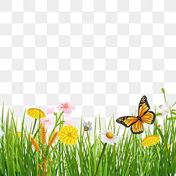 rumput musim semi dengan latar belakang kupu kupu yang indah hijau rumput musim semi png transparan gambar clipart dan file psd untuk unduh gratis in 2020 butterfly background butterfly illustration butterfly watercolor pinterest