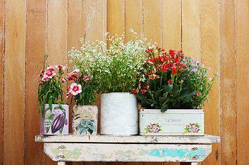 23 Formas fáciles y adorables de actualizar la decoración de tu hogar