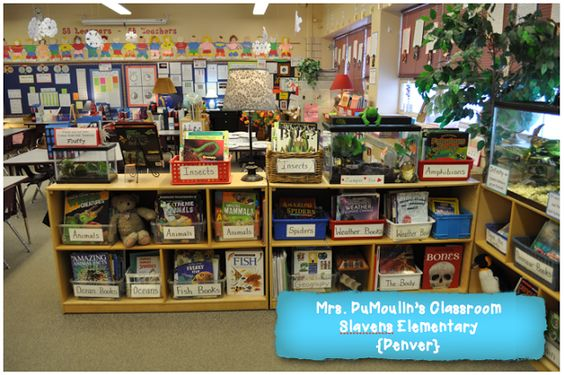 Creating Readers and Writers:  Nifty Nonfiction Blog Post  {See Mrs. DuMoulin's classroom library... it's packed with fun and exciting nonfiction!}: