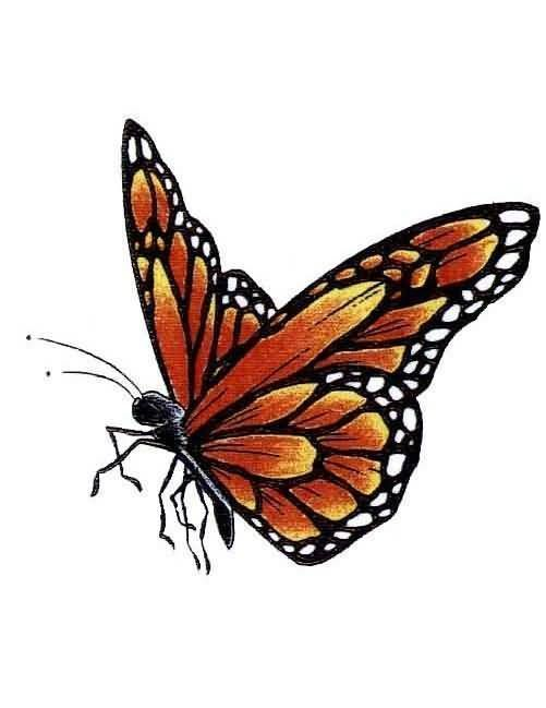 And Nice One Flying Monarch Butterfly Tattoo Design On Paper Stencil A In 2020 Monarch Butterfly Tattoo Butterfly Tattoo Designs Butterfly Tattoos Images