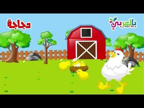 افكار شرح وحدة الحيوانات رياض اطفال حيواناتي المفضلة بالعربي نتعلم In 2021 Character Family Guy Art