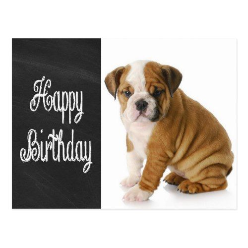 Happy Birthday Bulldog Puppy Chalkboard Postcard Zazzle Com