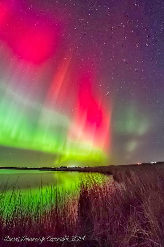Northern lights over Caithness, Scotland. Photo by Maciej Winiarczyk. Life on a Small Island blog.