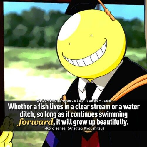 Assassination Classroom Quotes: Pinterest • The World's Catalog Of Ideas
