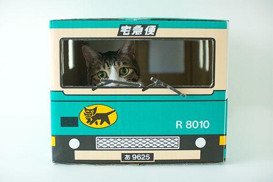 Kuroneko Yamato Cat House
