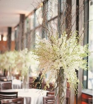 Curly Willow Tips and white Dendrobium Orchids paired together in bulk make for stunning wedding centerpieces!: