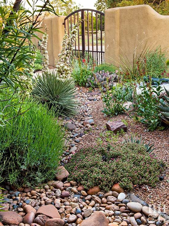 Create A Water Wise Landscape Low Water Gardening Water Wise Landscaping Low Water Landscaping