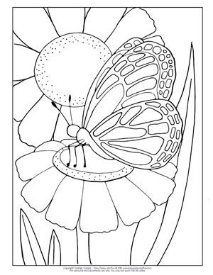 Butterfly Coloring Pages Free Printable From Cute To Realistic Butterflies Butterfly Coloring Page Coloring Pages Butterfly Pictures