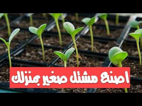 اصنع مشتل صغير بمنزلك قناة تكنومكس م شريف فاروق Youtube Plants Herbs Garden Design
