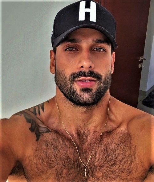 Hairy Dudes Company Hairy Chested Men Bearded Men Hair And