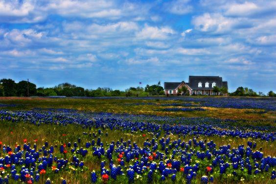Ennis, TX