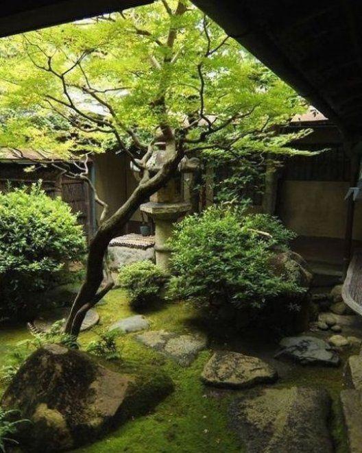 Japanischer Garten Im Hinterhof Moos Steine Baum Gr Ne Str Ucher Gartendeko Gartengestaltung Gartenanl Japanese Garden Japanese Garden Design Japan Garden