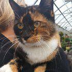 This is Pumpkin. We met her at the garden store.