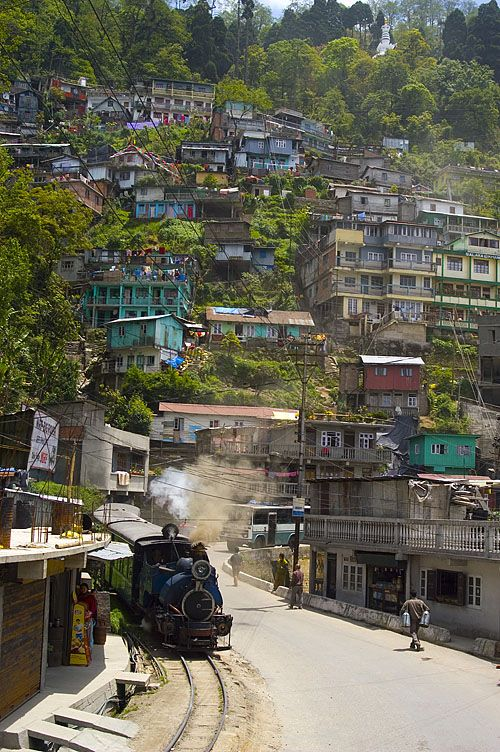 Darjeeling, India - and the train I couldn't catch.