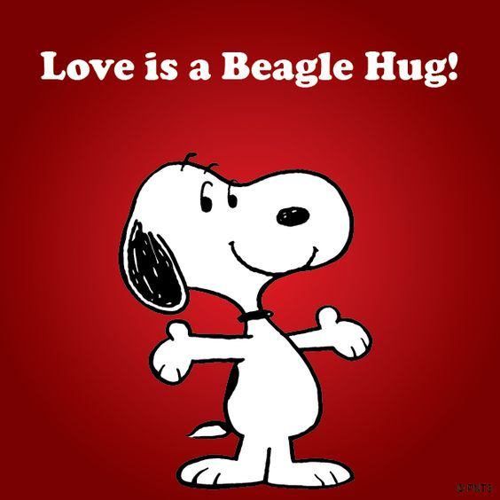 Image result for love is a beagle hug