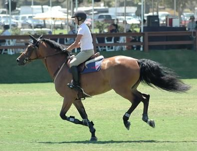 Horseback riding, Exercise and Stability on Pinterest