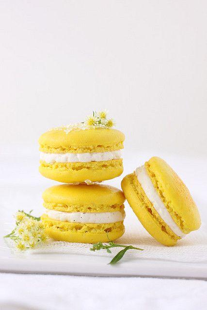 yellow macarons cookies