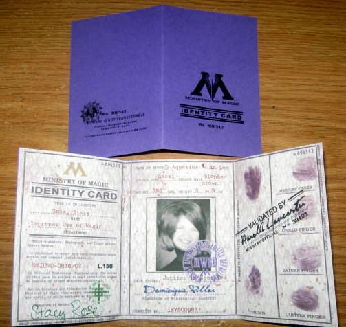 Wizarding Government Identity Id Card British Ministry Of Magic Personal Cards Harry Potter Etsy