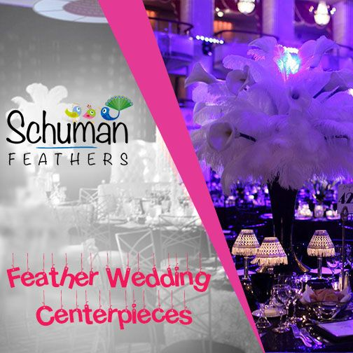 Use ostrich feathers to bring out the glamour in weddings. Visit for wholesale feathers: goo.gl/FFZCbo #wholesale #decoration #feather #feathers #ostrichfeather #weddingplanning #feathercenerpieces #business #weddingcenterpieces