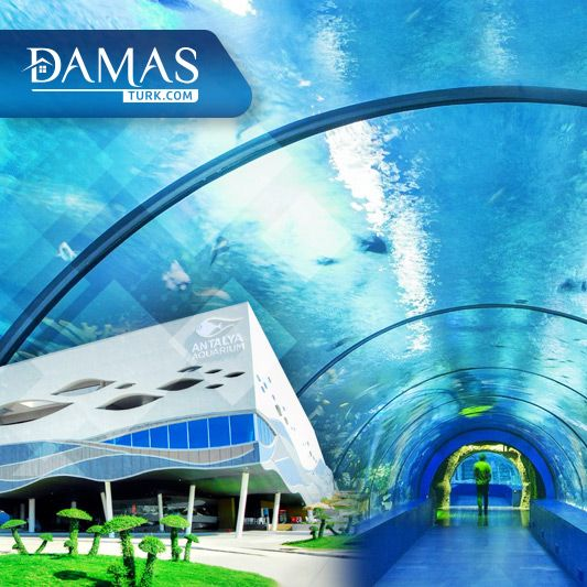 أنطاليا أكواريوم أكبر حوض أسماك في العالم شركة داماس تورك العقارية Antalya World Aquarium