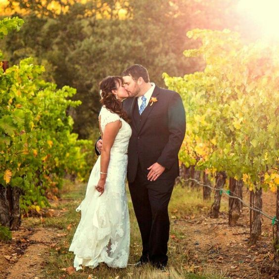 Perfect sunset photo in the vineyard.