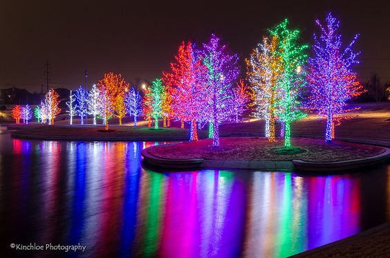 Beautiful Christmas tree lights reflection in water